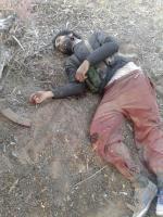 صور للإرهابيين الذين قتلوا على يد قواتنا المسلحة صباح اليوم في بن قردان